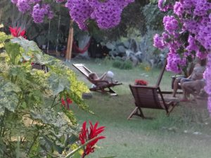 Akdeniz Bahcesi, self-catering  family holiday in Cirali Turkey