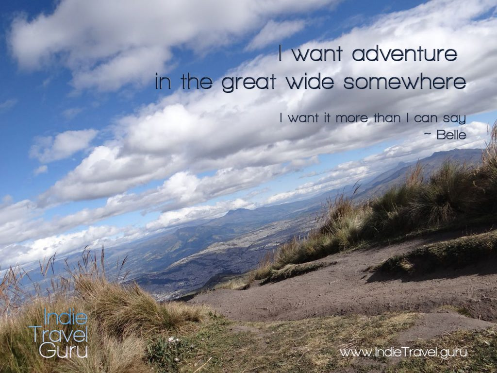 Travel quote: adventure in the great wide somewhere